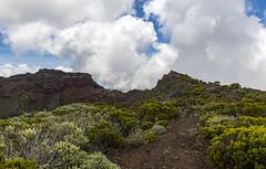 Cratère Commerson / Кратер Комерсон (dmilokt) Tags: природа nature пейзаж landscape гора mountain вулкан кратер crater volcan лава lava дорога road dmilokt