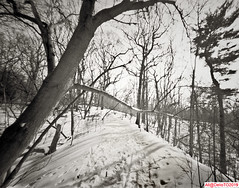 February on a sunny trail (DelioTO) Tags: 4x5 blackwhite canada city cliff d23 f250 fomapan100 lake landscape ontario pinhole rural snow toned trails winter woods