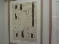 Iconic Picasso Drawing, Prisoner with dove of Peace, Picasso Museum, Buitrago de Lozoya. Madrid (d.kevan) Tags: museum buitragodelozoya exhibits drawings displaycabinets madrid spain bars dove prisoner