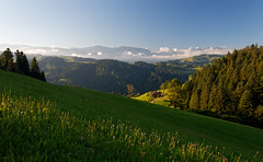Emmental sunrise (eichlera) Tags: emmental switzerland sunrise morning landscape nature meadow trees mountains alps summer sky
