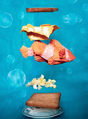High protein food? (Rohit KO) Tags: origami paper paperfolding fpld folding papercraft craft art clown fish yoo tae yong orange white ocean bubbles sandwish high protein rohit ko