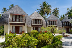 A7304409_s (AndiP66) Tags: bandos nordmaléatoll northmaleatoll kaafu atoll insel island malediven maldives indischerozean indianocean märz march 2019 sony sonyalpha 7markiii 7iii 7m3 a7iii alpha ilce7m3 sonyfe24105mmf4goss sony24105mm 24105mm emount sel24105g andreaspeters