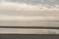 Maasvlakte Beach (Bart van Damme) Tags: bartvandamme coastallandscape coastalprotection coastalrenewal fotograaf fotografie infostudiovandammecom maasvlakte2 maasvlaktebeach manmadelandscape newtopographics noordzee northsea photographer photography reclamation reclamations slufter sociallandscape studiovandamme thenetherlands