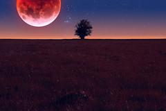 Mond küsst Erde (Gruenewiese86) Tags: fuji harz landschaft sonnenuntergang xe1 mond vollmond moon blutmond minimal minimalismus night star nightshoot