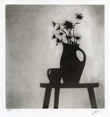 still life 1975 (Alexander Tkachev) Tags: alternativephotography altprocess bromoil blackwhite mediumformat film stilllife slavichunibrom