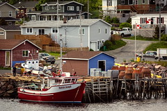 Good Neighbors (Bert CR) Tags: newfoundland vacation fishing fishingboat outpost newfoundlandandlabrador colorful safeharbor goodneighbors outportsettlements village fishingvillage boat