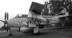 XL505 FAIREY GANNET YORKSHIRE AIR MUSEUM ELVINGTON (toowoomba surfer) Tags: aircraft aviation aeroplane museum airmuseum aviationmuseum royalnavy