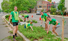 2019.05.04 Vermont Avenue Garden Blooms and Work Party, Washington, DC USA 01797