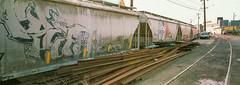 Ballard Rail Yards (Taomeister) Tags: rdpiii mamiya7panoramicadapter 43mmf45n seattle fujifilmprovia100f
