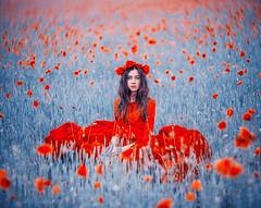 Poppies (hobopeeba) Tags: crimea poppies girl model sun red blue poppy art