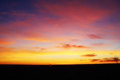 A vibrant sunrise (Bradley East Photography) Tags: sunrise sunbeam colorfulsky sky skies cloud clouds pink purple blue yellow orange lively happy best landscape silhouette black nature hori horizontal medicine hat alberta canada north america