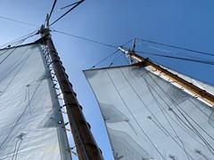 05052019-30 (Fruitcake Enterprises) Tags: centerforwoodenboats thecenterforwoodenboats seattle lakeunion birthweek lavengro sailboat dlused