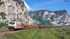 eu43-005+colorato RTC (coquinati1) Tags: railtractioncompany trentinoaltoadige trento colorato eu43 rtc freighttrainfreightrain trenomerci merci treno locomotiva lokomotion