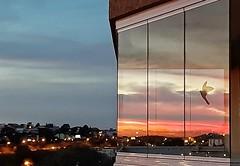 reflexos (Jakza) Tags: reflexo pordosol vidro factoryunanimous frenteafrente ngc challengeyouwinner cyunanimous