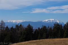 Schneeberg (SchnNic) Tags: berg schneeberg rosaliengebirge blau weis bäume wiese braun brown trees baum wolke wolken landschaft landscape österreich austria