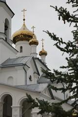 49. Пасхальный молебен в Адамовке 29.04.2019