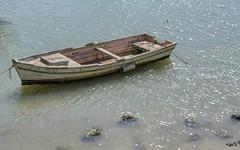 _DSC2135 copia (Luis PS.) Tags: barcos mar puertostamaria 1610 d3100 karma spain utopia widescreen boats ocean sea