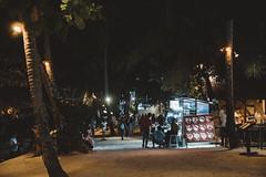 _MG_3291 (waychen_c) Tags: philippines ph visayas centralvisayas bohol provinceofbohol panglao municipalityofpanglao panglaoisland alonabeach boholsea sea beach coast coastline seascape island night nightscape tree coconuttree cityscape urban cebutour2019 菲律賓 維薩亞斯 維薩亞斯群島 中維薩亞斯 保和 保和省 邦勞 邦勞島 阿羅那海灘 海灘 沙灘 南洋 2019宿霧旅行