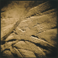 Tracks (Antonio's darkroom) Tags: holga trix pyrocathd forte polywarmtone pw17 ivory lith moersch toned