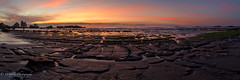 South Island Sunset (OJeffrey Photography) Tags: westcoast southisland newzealand panorama pano pink red orange sunset tasmansea ocean tidepool rocks ojeffreyphotography ojeffrey jeffowens nikon d850