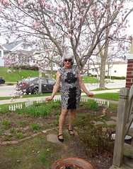 Laurette And Magnolia Flowering Concurrently (Laurette Victoria) Tags: spring magnolia woman laurette silver dress sunglasses