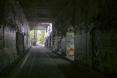 IMG_4255 (ickeliv) Tags: naturpark südgelände berlin germany