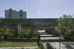 IMG_4203 (ickeliv) Tags: naturpark südgelände berlin germany