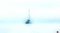 Wet Dream (endresárvári) Tags: sardinia stintino canon summer sea blue mediterranean sailboat boat holiday italian italy