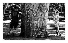 juego de niños / kids game (Luis kBAU) Tags: kids niños juego play arbol tree diversión fun