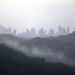 Panama entre la niebla