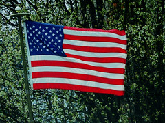 IMG_8640 (kennethkonica) Tags: oldglory americanflag flag color canonpowershot canon stars stripes indianapolis indiana indy red white blue orange usa america midwest hoosier random global freedom potus donaldjtrump