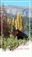 Te estamos esperando!!! . . www.carpediemelbolson.com.ar  @carpediem_elbolson @carpediemelbolson @carpediem.cabanasysuites @turismoelbolson #ElBolsonTodoElAño #TeEstamosEsperando #quieroestarahi #cabañascarpediem #cabañas #alojamiento #turismoelbolson #el (Cabañas & Suites) Tags: alojamiento patagonia turismoelbolson bestvacations travelers bienestar comarca elbolson suites instagram surargentino carpediem elbolsontodoelaño vacaciones viviargentina argentina teestamosesperando patagoniaargentina turismoargentina holidays visitargentina instatrip comarcaandina paisaje quieroestarahi cabañascarpediem turismo cabañas travel montañas