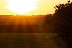 End of the Day (Carolin de Verdier) Tags: sunset solnedgång sunrays flare solstrålar källna klippan sverige skåne sweden scania outdoor utomhus