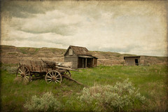 Badlands AB (danwdotca) Tags: alberta badlands canada drumheller landscape nature outdoors abandoned decay decaying ghost heritage hills homestead prairie rapids rural sheds texture wagon western