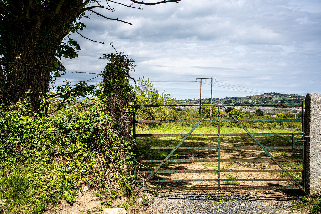 LEHAUNSTOWN LANE [NEAR THE LAUGHANSTOWN TRAM STOP IN CHERRYWOOD]-152309
