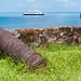 Cannons taking aim at the MS Rotterdam from Fort Santa Barbara - Trujillo, Honduras