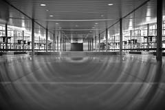 Light Reflections Airport Munich (ckilger) Tags: leicam10 summiluxm11435asph flughafen münchen sw bw reflektionen lichter säulen grafisch geometrie decke