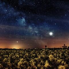 Frühlings-Milchstraße 2019 (ReppiX) Tags: sterne stars astrofotografie astrofotografia astrophoto astrophotography astro frühling nature natur jupiter milchstrasse milkyway nightphotography nightfotography nacht nachtfotografie