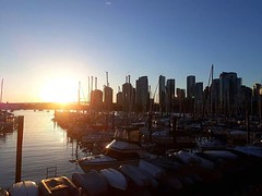 Hello, gorgeous! . #Vancouver #travel #digitalnomad #spring (Doug Murray (borderfilms)) Tags: hello gorgeous vancouver travel digitalnomad spring