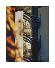 poetic shadows + (Armin Fuchs) Tags: arminfuchs würzburg lavillelaplusdangereuse circularstairway staircase light shadows wall yellow