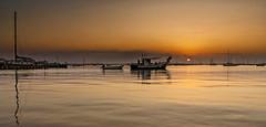 Saliendo del puerto (Fotgrafo-robby25) Tags: amanecer barcosveleros barcosdepescadores marmediterráneo puertodesanpedromurcia sol sonyilce7rm3 transportes