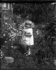 Girl From 1900s - Vintage Wet Plate (Photo Alan) Tags: wet vintage blackwhite blackandwhite monochrome girl wetplate negative