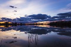 Cambridgeshire Sunset (CraDorPhoto) Tags: canon6d sunset sky clouds reflection colour landscape lake water nature outside outdoors hinchingbrooke uk cambridgeshire