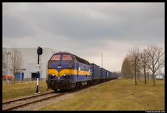 Railexperts 6703, Amsterdam Houtrakpolder 07-03-2018 (Henk Zwoferink) Tags: amsterdam noordholland netherlands henk zwoferink railexperts raillogix china silk road 1251 6703 1200 houtrakpolder shuttle