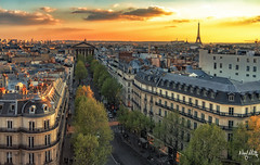 La Madeleine (nicolamariamietta) Tags: paris france town city cityscape roofscape boulevard street streetphotography printemps haussmann church tour eiffel clouds cloudy sunlight horizon trees buildings architecture sky sunset travel handheld sonya7 mirrorless canon fd 28 mm colors