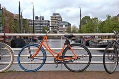 On the Bridge (Hindrik S) Tags: bike bicycle fyts fiets rad fahrrad swap bridge prinshendrikbrug liwwadden ljouwert leeuwarden water canal stadsgracht stedsgrêft street strase straat strjitte stilllife wheel rêd tsjil wiel blue blauw blau orange oranje sonyphotographing sony sonyalpha alpha α77 slta77ii sonyilca77m2 tamron tamronaf16300mmf3563dillvcpzdmacrob016 tamron16300 16300 2019 swapfiets