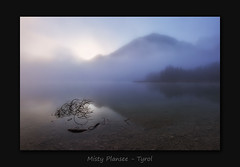 Misty Plansee (MC--80) Tags: misty plansee moody tyrol tirol nebel
