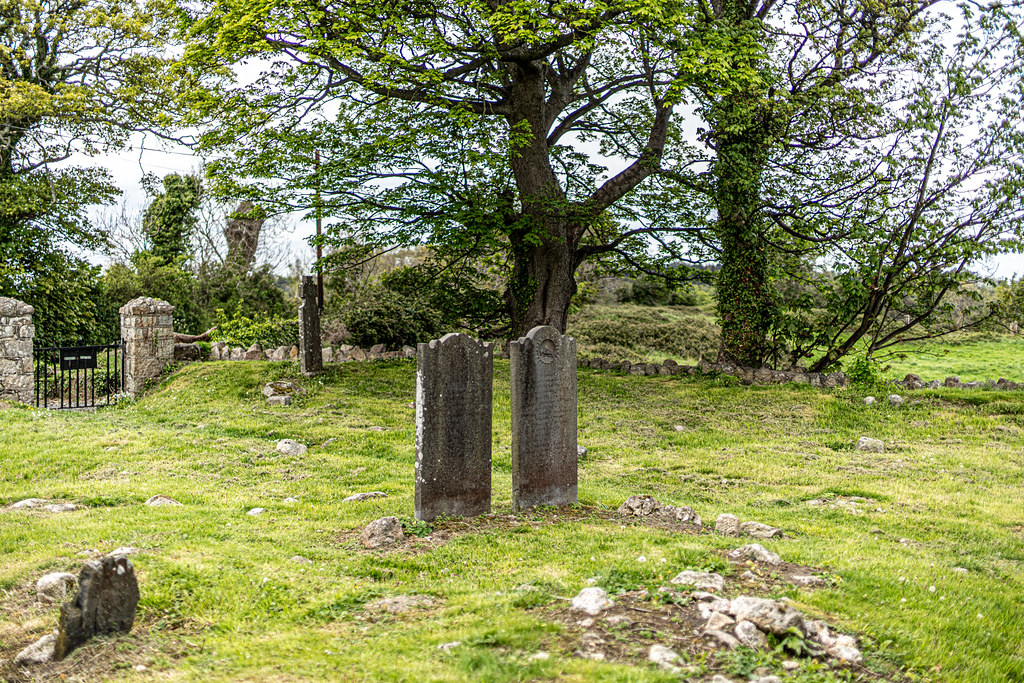 TULLY CHURCH AND CHURCHYARD [LEHAUNSTOWN LANE DUBLIN]-152354