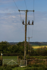 A Slight Lean (Mark Wasteney) Tags: telegraphtuesday htt powerlines powerpole electric gate field