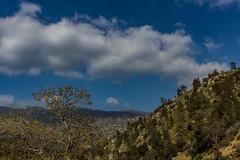 Clouds Rolling Through (davidseibold) Tags: america california cloud hwy178 jfflickr kerncounty kernrivercanyon mountain nature photosbydavid plant postedonflickr postedonmewe sky tree unitedstates usa lakeisabella unitedstatesofamerica